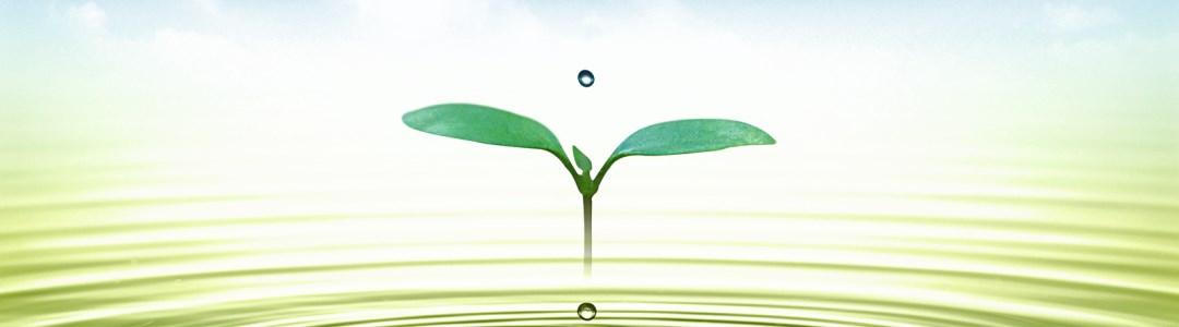 Mindfulness Uitdaging Dag 28